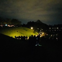 All Saints' Day at Skogskyrkogården
